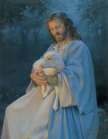 Я знаю Своих овец