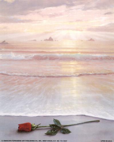 Роза на берегу